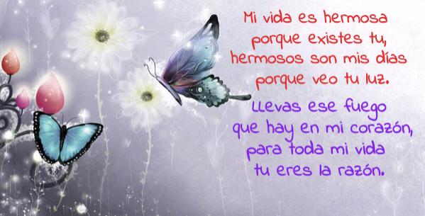 Frases De Amor Para Mi Novia En Una Postal Con Mariposas