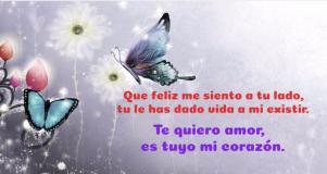 Imagen de mariposas con frases de amor para mi novia.