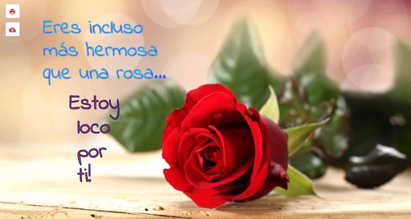 Rosas Con Frases Bonitas Para Una Amiga Gong Shim L